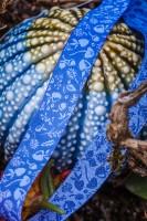 Forest Mini-Sweets Blau, Webband